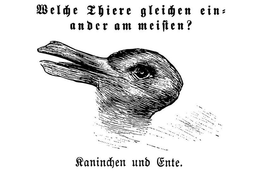 Il papero e il coniglio